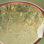 Previna problemas visuais: a importância do controlo da miopía em crianças, hipermetropia, presbiopia, astigmatismo … conselhos de profissionais sobre prevenção.